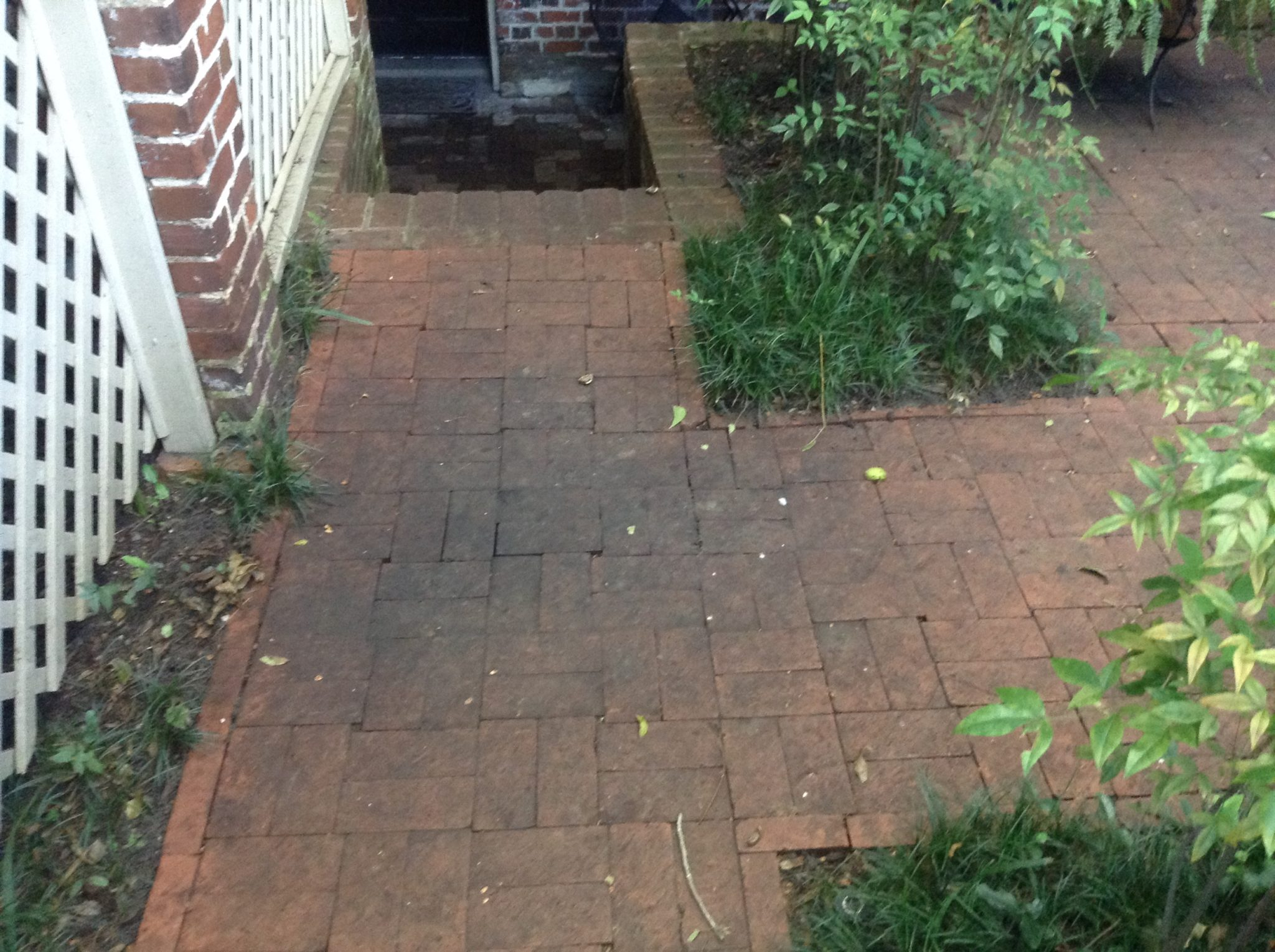 Driveway Cleaning Mike S Pressure Cleaning Savannah Ga